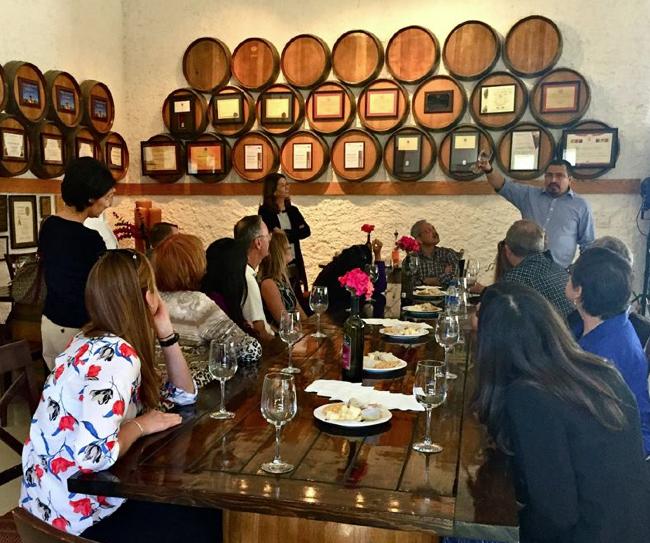 Winery visit to Viña de Liceaga