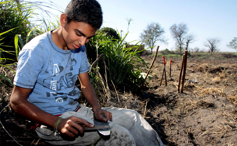 Trujillo - Child Labor