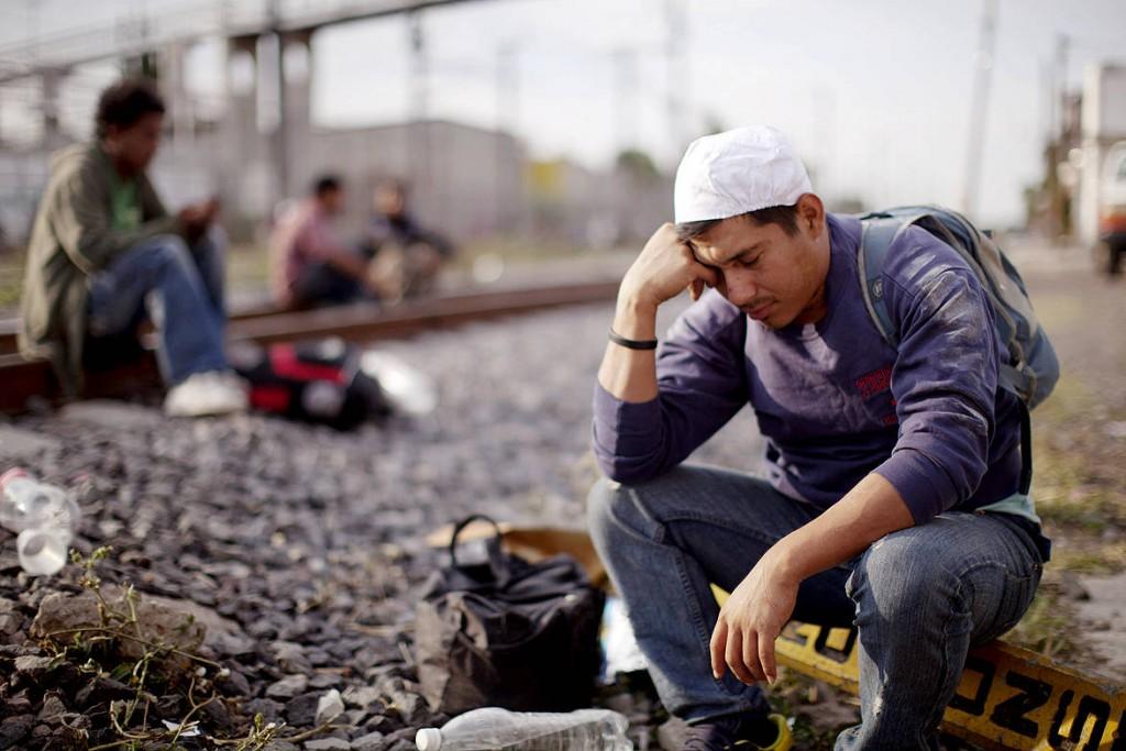 Pena - Migrants 8