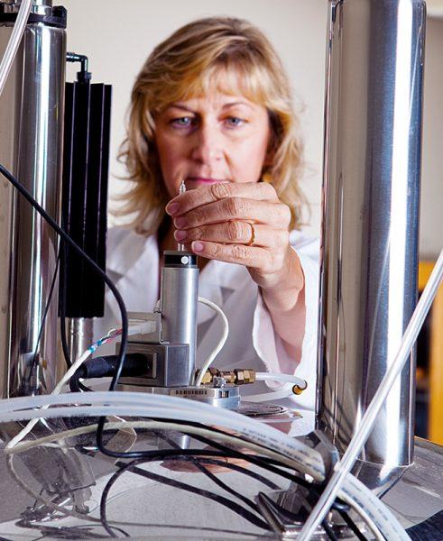 USD Professor Tammy Dwyer