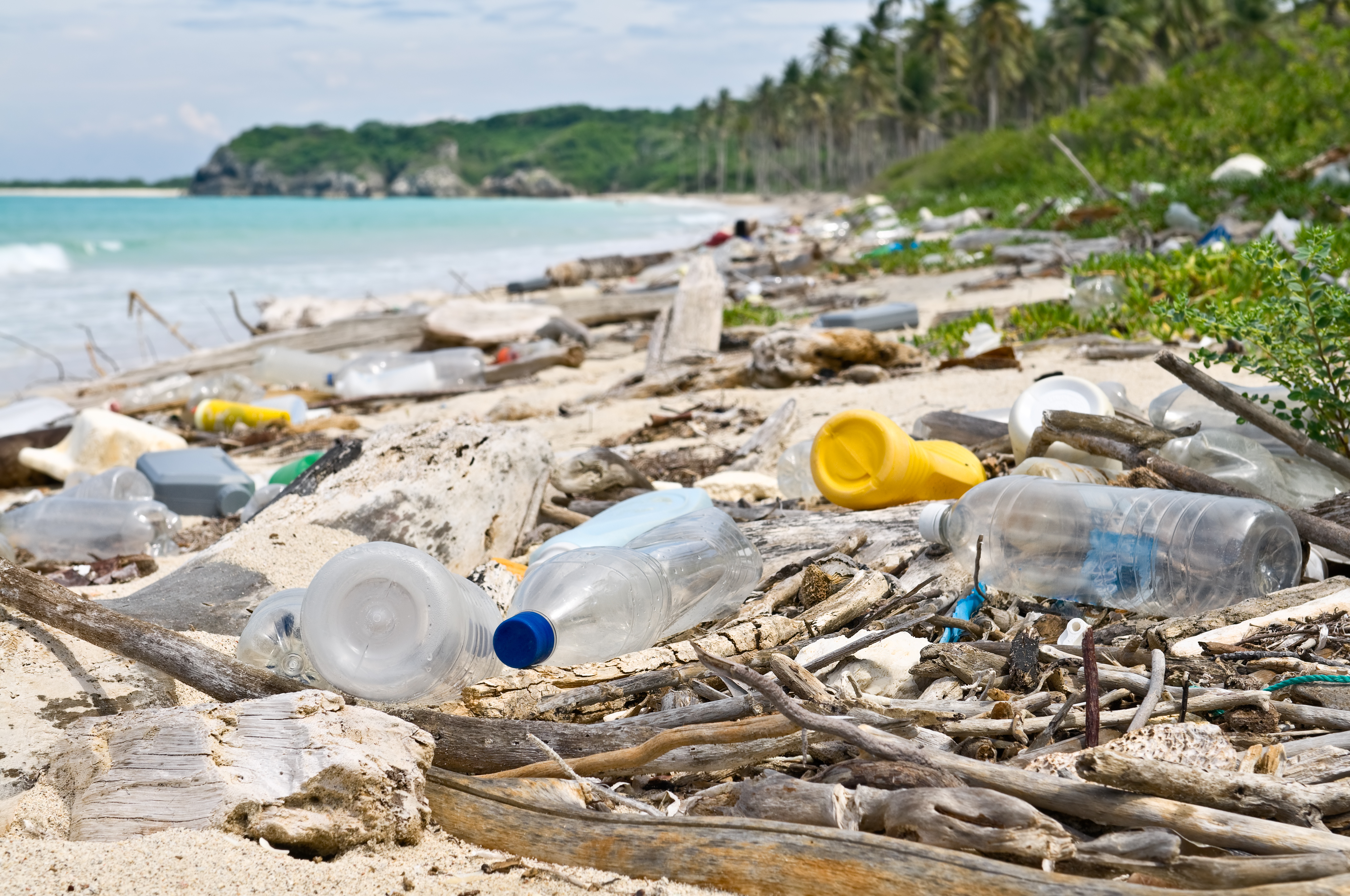Plastic trash sullies a beautiful tropical beach